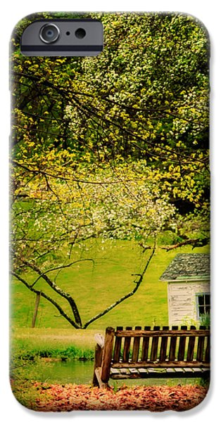 Old Barn Photo Photographs iPhone Cases - A Bench under Spring Canopy iPhone Case by Thomas Schoeller
