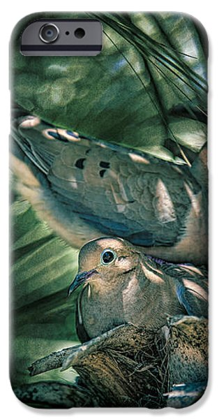 Love a Dove Dove iPhone Case by Chris Lord
