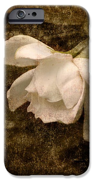 Love Letter IX Cape Jasmine Gardenia iPhone Case by Jai Johnson