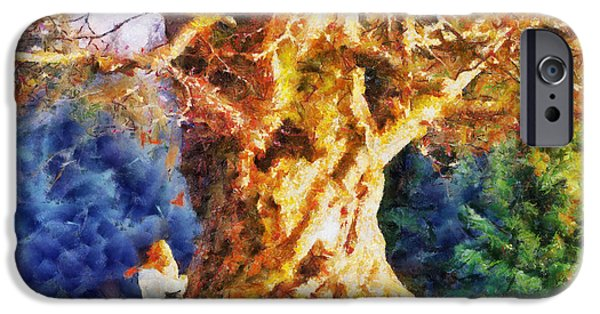 Old Trees iPhone Cases - Lovers Tree iPhone Case by Jai Johnson