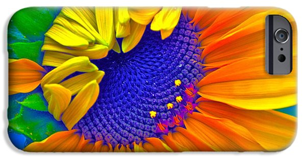 Sunflower Photograph iPhone Cases - Lucky iPhone Case by Gwyn Newcombe