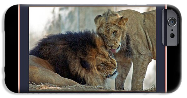 Smithsonian National Zoological Park iPhone Cases - Luke and John iPhone Case by Jonathan Whichard