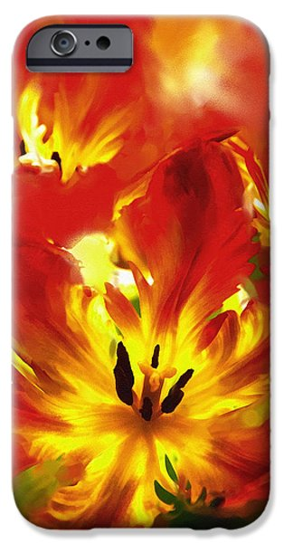 Multimedia Mixed Media iPhone Cases - Luminosity Of Nature iPhone Case by Georgiana Romanovna