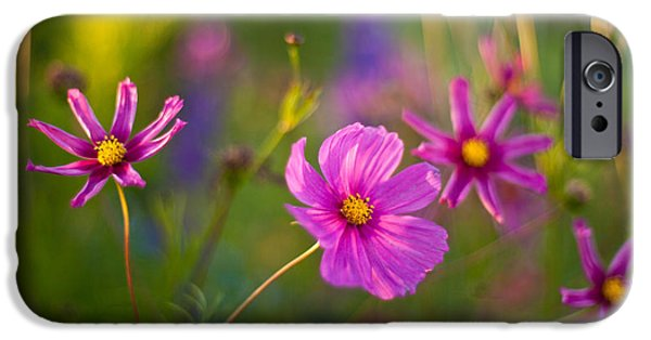 Cosmo iPhone Cases - Luminous Cosmos iPhone Case by Mike Reid