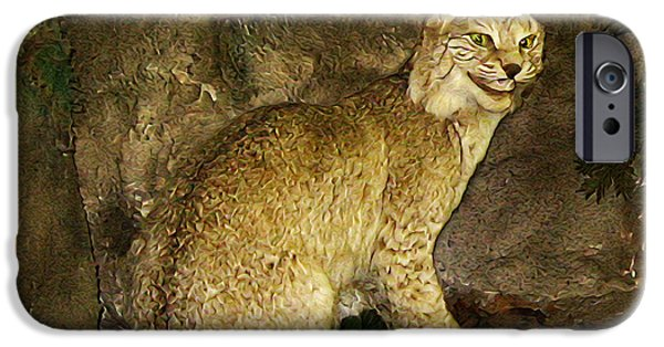 Bob Cats iPhone Cases - Lynx iPhone Case by Bill Cannon