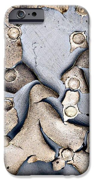 M O L T I N G iPhone Case by Charles Dobbs