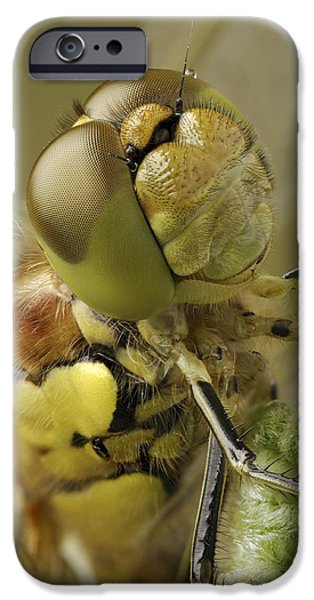 Made By Nature iPhone Case by Andy Astbury