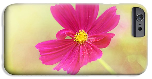 Fuchsia iPhone Cases - Mademoiselle iPhone Case by Amy Tyler