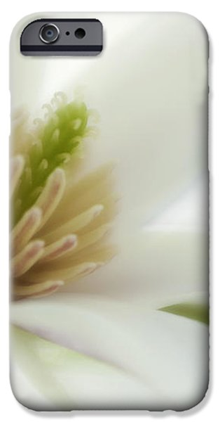 Magnolia iPhone Case by Silke Magino