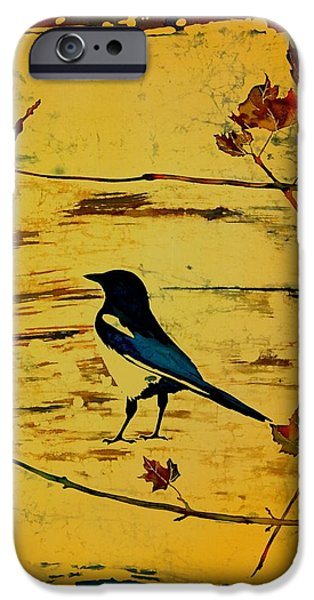 Magpie Framed in Maple iPhone Case by Carolyn Doe
