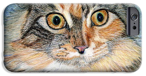 Maine Drawings iPhone Cases - Maine Coon Kitten iPhone Case by Karen Curley