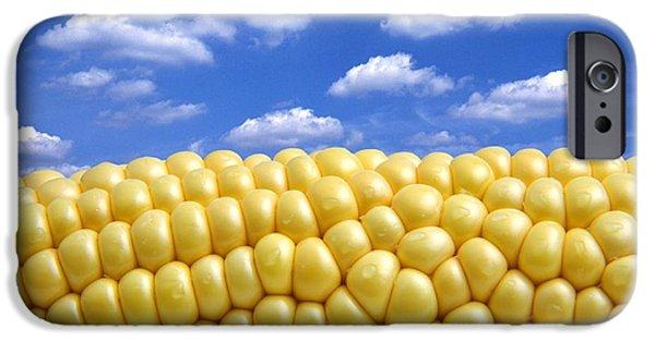 Corn iPhone Cases - Maize iPhone Case by Victor De Schwanberg