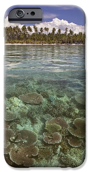 Malaysia, Mabul Island iPhone Case by Dave Fleetham - Printscapes