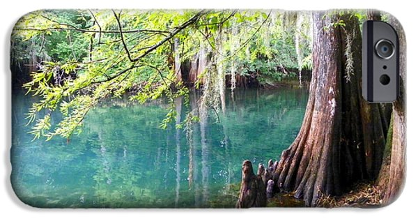 Chiefland iPhone Cases - Manatee Springs 812 iPhone Case by Sheri McLeroy