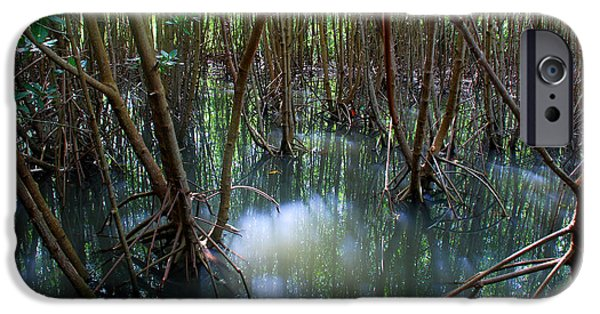 Best Sellers -  - Mangrove Forest iPhone Cases - Mangrove forest iPhone Case by Perry Van Munster