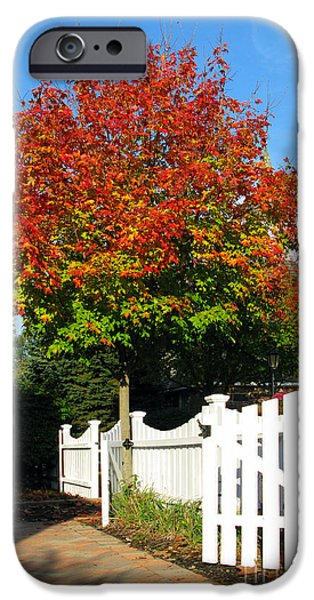 Park Scene iPhone Cases - Maple and Picket Fence iPhone Case by Olivier Le Queinec
