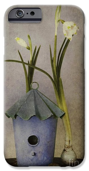 Bulb iPhone Cases - March iPhone Case by Priska Wettstein