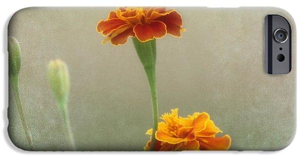 Kim Photographs iPhone Cases - Marigold Fancy iPhone Case by Kim Hojnacki