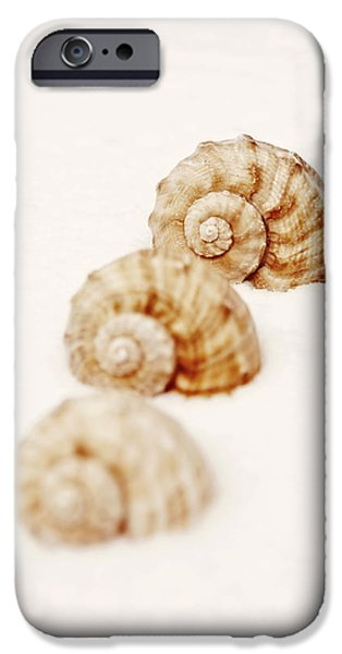 marine snails iPhone Case by Joana Kruse