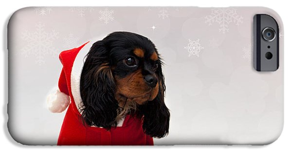 Purebred iPhone Cases - Marmaduke on snow background iPhone Case by Jane Rix