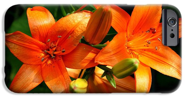 Florals Photographs iPhone Cases - Marmalade Lilies iPhone Case by David Dunham