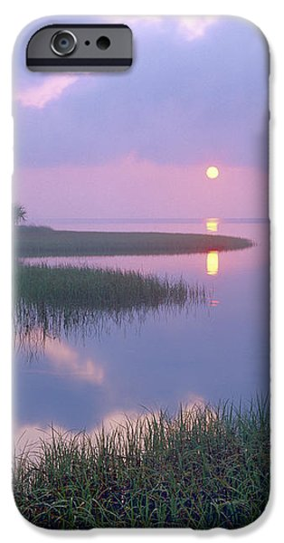 Marsh At Sunrise Over Eagle Bay St iPhone Case by Tim Fitzharris