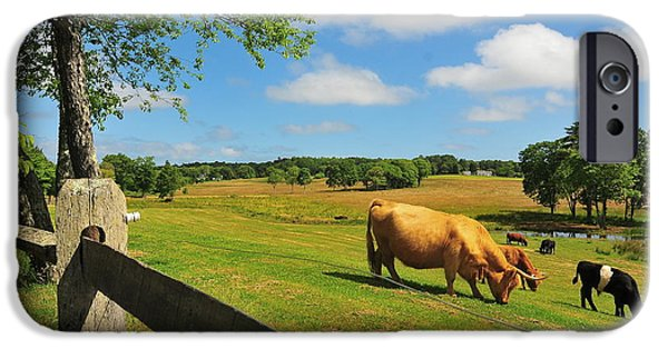 Catherine Reusch Daley iPhone Cases - Massachusetts Farm iPhone Case by Catherine Reusch  Daley