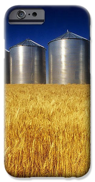 Mature Winter Wheat Field With Grain iPhone Case by Dave Reede