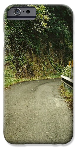Maui Highway iPhone Case by Marilyn Wilson