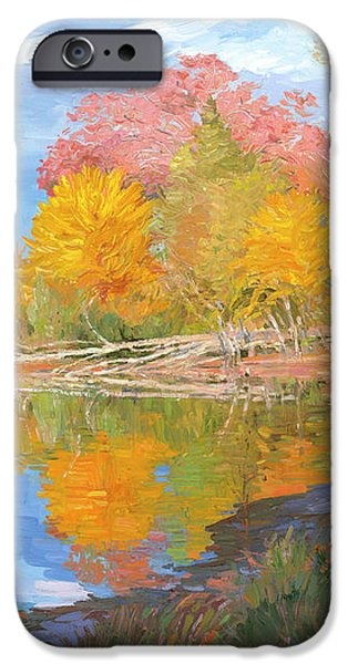 Mayslake at Fall iPhone Case by Judith Barath