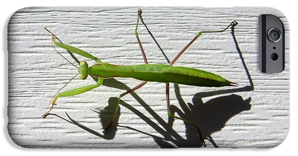 Mantises iPhone Cases - Me And My Shadow iPhone Case by Will Borden