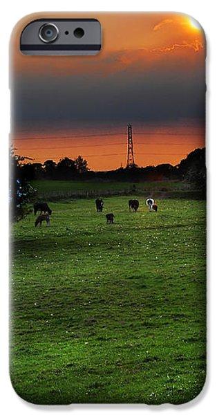 Meadow Field iPhone Case by Svetlana Sewell
