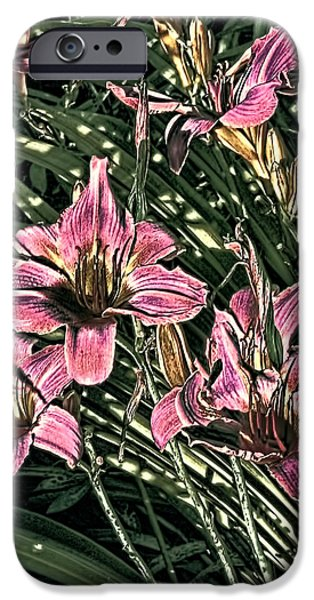 Artistic Photography iPhone Cases - Meadow Sunrise iPhone Case by Tom Prendergast