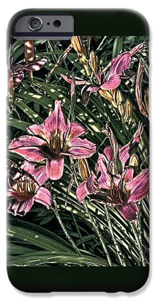 Meadow Sunrise iPhone Case by Tom Prendergast