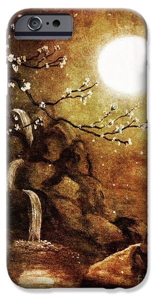 Buddhist Paintings iPhone Cases - Meditation Beyond Time iPhone Case by Laura Iverson