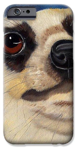 Meerkat Eyes iPhone Case by Debbie LaFrance