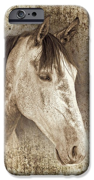 Portraits Photographs iPhone Cases - Meet The Andalucian iPhone Case by Meirion Matthias