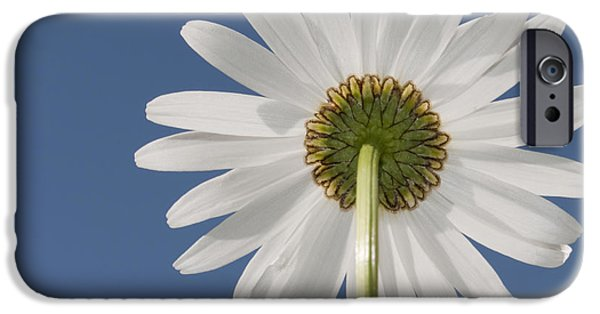 Norway iPhone Cases - Memories of Summer.. iPhone Case by Nina Stavlund
