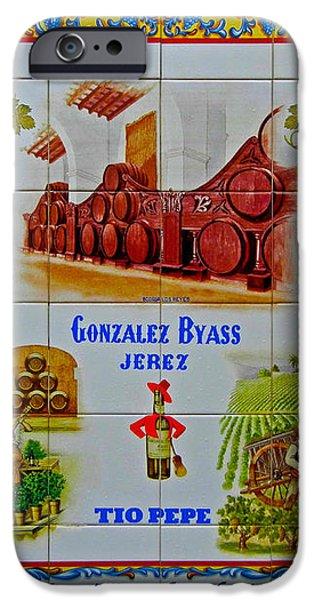 Meson El Alcazar iPhone Case by Juergen Weiss