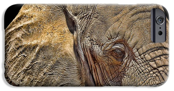 Elephants Photographs iPhone Cases - Mighty Morphin Power Elephant iPhone Case by Lourry Legarde