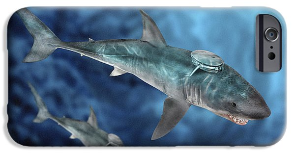 Shark iPhone Cases - Military Sharks iPhone Case by Victor Habbick Visions