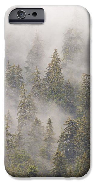 Tongass iPhone Cases - Mist In Tongass National Forest iPhone Case by Matthias Breiter