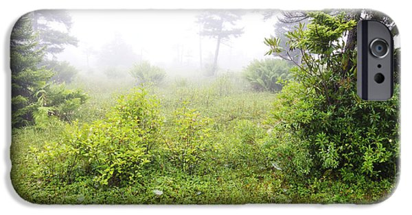 Fog Mist iPhone Cases - Misty Morning in the Glades iPhone Case by Thomas R Fletcher
