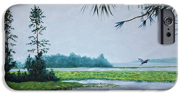 Tidal Creek iPhone Cases - Misty Morning iPhone Case by Stanton Allaben