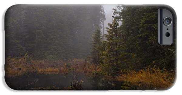 Fall iPhone Cases - Misty Solitude iPhone Case by Mike Reid
