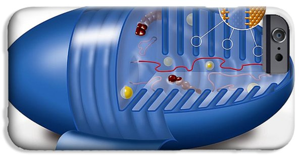 Atp Photographs iPhone Cases - Mitochondrion, Artwork iPhone Case by Art For Science