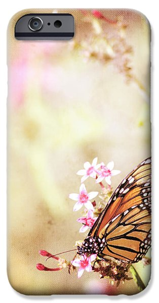 Vivid Mixed Media iPhone Cases - Monarch Canvas iPhone Case by Joel Olives