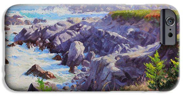 Seagull Paintings iPhone Cases - Monteray Bay morning 1 iPhone Case by Gary Kim