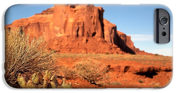 Nation iPhone Cases - Monument Valley Cactus iPhone Case by Jane Rix