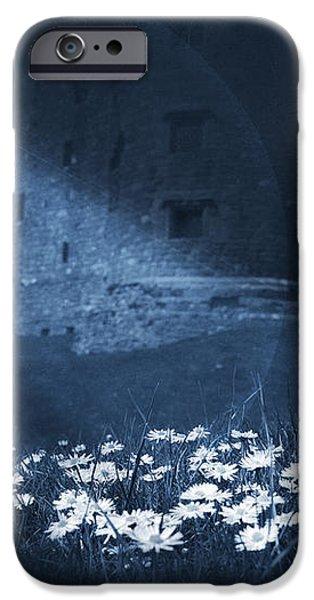 Moon Light Daisies iPhone Case by Svetlana Sewell